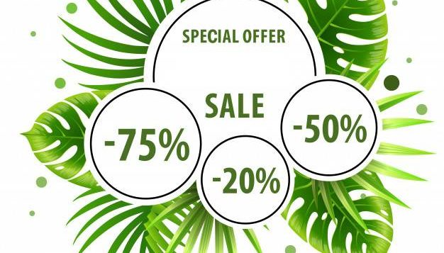 summer sale special offer green poster with palm leaves discount stickers