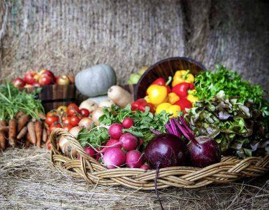sustainable-food-spots