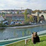 Bern_BearPark_1