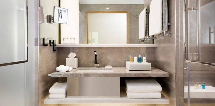 swissexecutive-garden-viewroom_bathroom-3