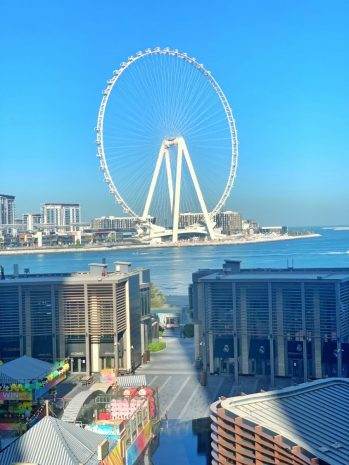 imperial_suite_view_sofiteljbr-8892a