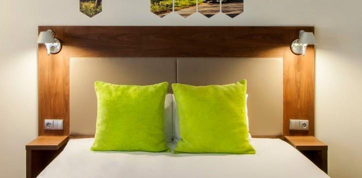 standartinis-kambarys-su-1-dvigule-lova