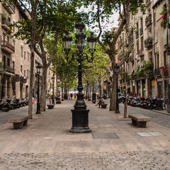 el-barrio-gotico-y-el-borne