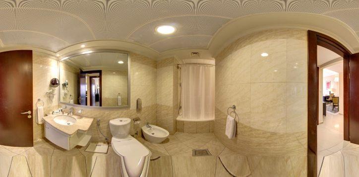 modern-1-br-master-bathroom