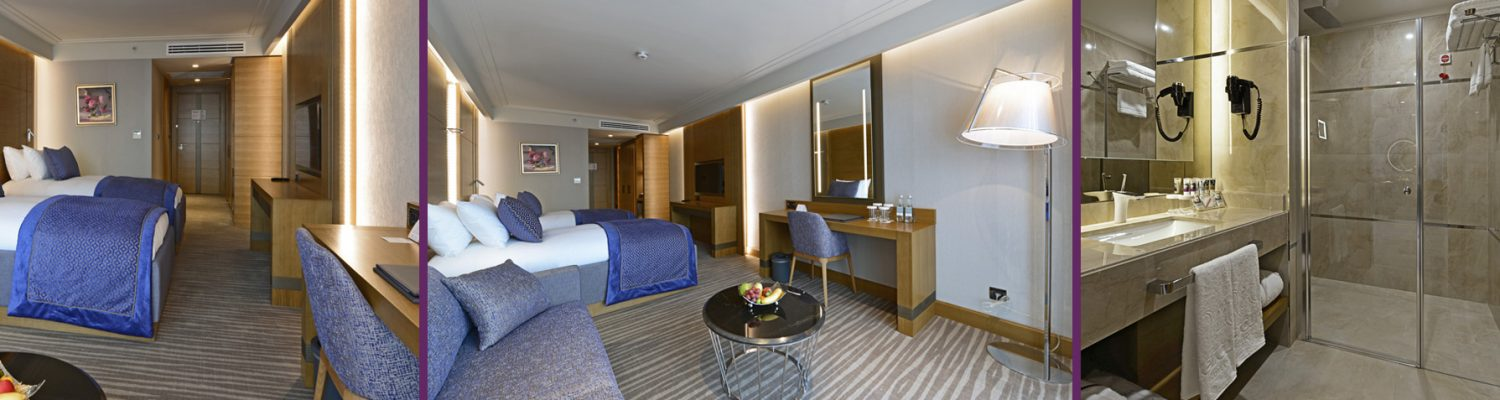 deluxe-room-2-single-beds